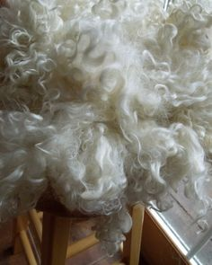 Teeswater Yearling Fleece Washed Undyed White by RainbowTwistShop, $13.95