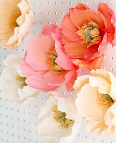 Fresh Cut Paper Flowers: Icelandic Poppies by Appetite Paper for Oh So Beautiful Paper #Crepepaperflowers