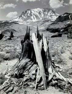 1949 Mount Lassen from the Devastated Area, Lassen Volcanic National Park, California by Ansel Adams Black And White Landscape, Black And White Pictures, Famous Photographers, Landscape Photographers, Ansel Adams Photography, Urban Photography, Color Photography, Ansel Adams Photos, Sierra Nevada