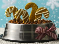 DIY Christmas gifts for the dog! Peanut Butter and Pumpkin Puppy Treats Recipe