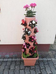 Így készül a virágtartó oszlop házilag   Balkonada Balcony Garden, Garden Plants, Terrace, Flower Decorations, Planter Pots, Mandala, Flowers, Diy, Gardening