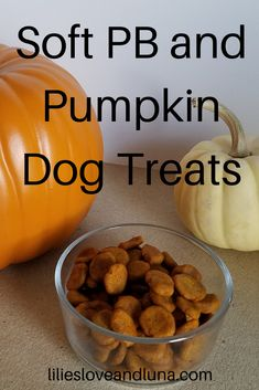 Easy to make 3 ingredient dog treats. These soft peanut butter and pumpkin dog treats are great for dog training. Soft Dog Treats, Frozen Dog Treats, Puppy Treats, Dog Biscuit Recipes, Dog Treat Recipes, Dog Food Recipes, Healthy Recipes, 3 Ingredient Dog Treats, Dog Training Treats