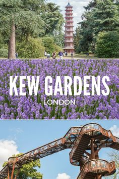 Looking for a day out in London? Try the Royal Botanic Kew Gardens in southwest London, home to the world's largest collection of plants and a World Heritage Site. Visit Kew in London, England, United Kingdom.
