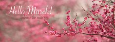 Hello March! Please be nice - Facebook cover