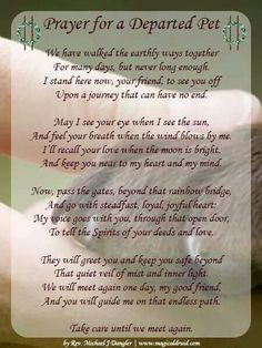 Prayer for a departed pet Loss of cat Love Dogs, Puppy Love, All Dogs, Puppy Pics, Animal Quotes, Dog Quotes, Animal Poems, Qoutes, Dog Sayings