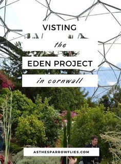 The Eden Project | V