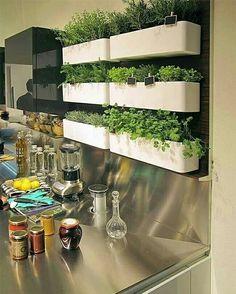 Hortinha na cozinha! ,