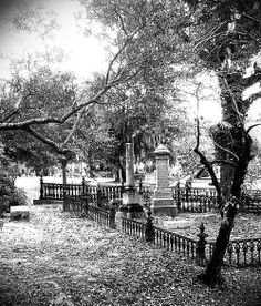 Oakdale Cemetery Wilmington Nc Map.16 Best Old Historic Wilmington Images Wilmington Nc Cape Fear