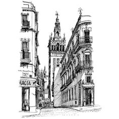 Keith Scott's sketch of La Giralda (Seville, Spain) ❤ liked on Polyvore featuring backgrounds and pictures