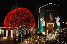 The Grotto - Festival of Lights