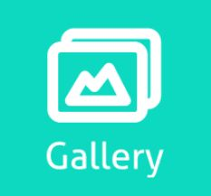 Gallery a Responsive Simple Beautiful Easy Powerful WordPress Gallery Plugin With Light Box Style. Create a gallery using custom post type and use gallery shortcode to publish your gallery anywhere in WordPress.