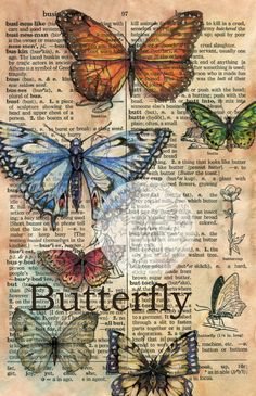 PRINT++Butterflies+Mixed+Media+Drawing+on+by+flyingshoes+on+Etsy,+$35.00
