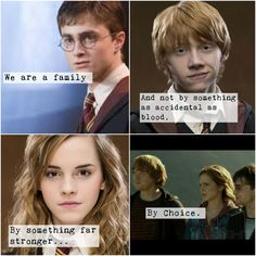 Harry, Ron, and Hermione + family + Harry Potter + always
