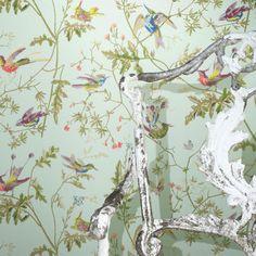 Femkeido - vogel behang inspiratie
