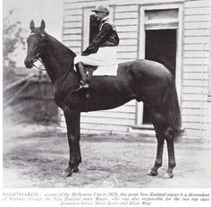 Nightmarch, foaled in 1925 was an outstanding New Zealand bred Thoroughbred racehorse known as The Kiwi.