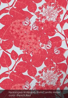 Hydrangea Wallpaper from Camilla Meijer in Peach Red