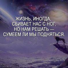 #саморазвитие #мудрость #философия #мысли #мысливслух #цитаты #мотивациянакаждыйдень #мыслимысли…