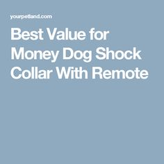 Best Value for Money Dog Shock Collar With Remote Training Collar, Dog Training, Dog Shock Collar, Best Love Quotes, Best Dogs, Fur Babies, Remote, French Toast, Food And Drink