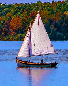 """The beauty of a fall sail"" Vince B. made the sails for his Penobscot 14 using a Sailrite Sail Kit. Sailboat Cruises, Sailboat Yacht, Sailboat Plans, Yacht Boat, Classic Sailing, Classic Yachts, Wooden Sailboat, Wooden Boats, Sailing Dinghy"