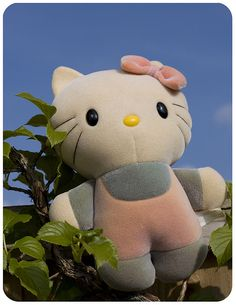 I remember this Hello Kitty plush well.  It changed color in the bath.  The outfit would change from gray and pink, to blue and yellow.  It was from a Hello Kitty line called Hello Color (or Hello Colour) by Matchbox.