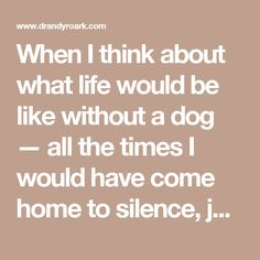 When I think about what life would be like without a dog — all the times I would have come home to silence, jogged alone, or had no one to listen to my live commentary on Game of Thrones — the choice is obvious. Give me the pain at the end.