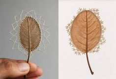 Delicate Crochet through Leaves – Craft Gossip - how amazing is this!