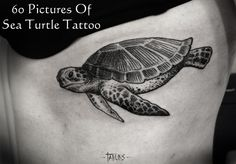 60 Great Examples of Sea Turtle Tattoos with Meanings