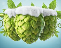 """Check out this @Behance project: """"3 Hops"""" https://www.behance.net/gallery/17967309/3-Hops"""