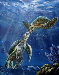 """""""True Love's Kiss"""" Painting by Marco Antonio Aguilar posters, art prints, canvas prints, greeting cards or gallery prints. Find more Painting art prints and posters in the ARTFLAKES shop. Sea Turtle Art, Turtle Love, Sea Turtles, Sea Turtle Painting, Sea Turtle Pictures, Kiss Painting, Kiss Art, Ocean Creatures, Cute Animals"""