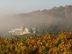 Heron Hill Winery in the Fall. Photo by Jake Cornelius