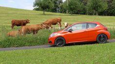 Essai de la nouvelle Peugeot 208 Peugeot 208, Blog, Baby Born, Face, Blogging