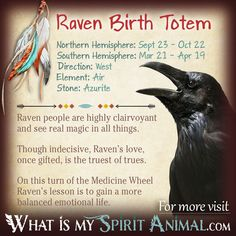 Is Raven your Birth Totem? Read the in-depth description in my Native American Zodiac & Astrology series! Learn Raven's personality, compatibility, & more!