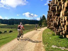 mountain Biking in #Folgaria, Trentino Italy