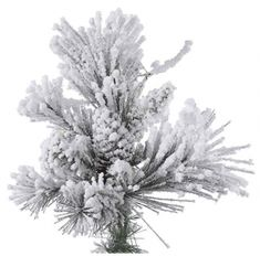 Vickerman Flocked Alberta Artificial Christmas Tree with Artificial Pine Cones and 250 Warm White LED Lights, x Flocked Trees, Fireplace Inserts, White Led Lights, Flocking, Pine Cones, Christmas Tree, Warm, Top, Outdoor