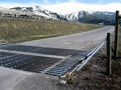 wildlife and cattle guard