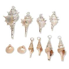 Focal and drop mix, multi-shell (natural) with gold-finished and silver-plated steel, 17x16mm-53x19mm. Sold per pkg of 10.
