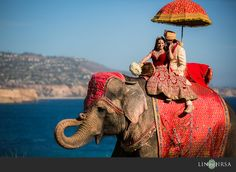 Couple on elephant with ocean in the background