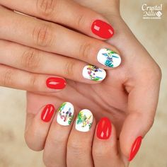 Tropical Nails 🦜🌴💅 www. Crystal Nails, Tropical, Crystals, Beauty, Crystal, Beauty Illustration, Crystals Minerals