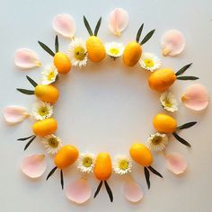 On the tenth day of Christmas my true love gave to me...10 kumquats!