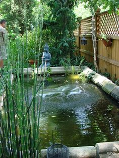 I wish I could have something like this in my yard here in AK.