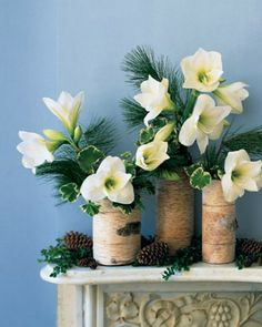 Holiday Flower Arrangement Create a serene winter tableau with this simple arrangement: birch bark wrapped around glass cylinders filled with plants found easily at this time of year. Winter Flower Arrangements, Christmas Arrangements, Christmas Table Settings, Floral Arrangements, Christmas Decorations, Table Decorations, Christmas Flowers, Winter Flowers, Christmas Home