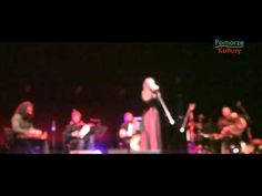 Osama Abdulrasol Quartet na Tygodniu Flamandzkim Concert, Youtube, Recital, Concerts, Youtubers, Youtube Movies