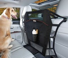 Create for air travel for pets | Travelling with your Pet Ideas ...