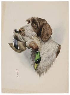 Boris Riab - (French/Russian, Portrait of a Wirehaired Pointing Griffon Animals And Pets, Cute Animals, Dog Artwork, Art Van, Hunting Dogs, Duck Hunting, Dog Eyes, Art For Art Sake, Sports Art