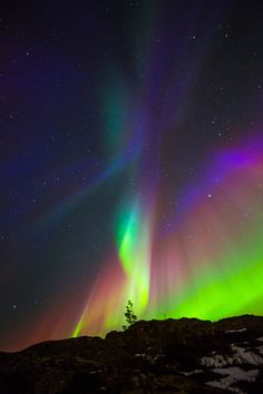 "drxgonfly: "" Northern Lights of Norway ♥ (by Vibeke Støbakk Myren) """