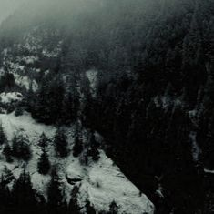 Twilight 2008, Twilight Saga, Dark Summer, Night Show, Twilight Pictures, Misty Forest, Dark Paradise, Far Away, Aesthetic Pictures
