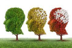 Donepezil ohne Rezept kaufen — Alzheimer: Donepezil verzögert Übergang zum...