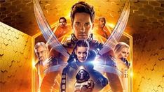 Movie Ant-Man and the Wasp Paul Rudd Ant-Man Wasp (Marvel Comics) Evangeline Lilly Wallpaper Paul Rudd, Evangeline Lilly, Michelle Pfeiffer, Captain Marvel, Captain America, 2018 Movies, Hd Movies, Movies And Tv Shows, Movies Online