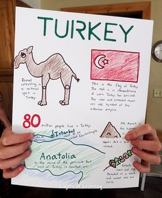 1000 images about turkey unit on pinterest country of for Turkey country arts and crafts