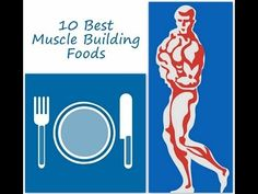 Get toned - lose weight and build muscles - 10 best muscle building foods
